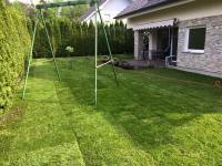 končna podoba urejene zelenice, položena trava