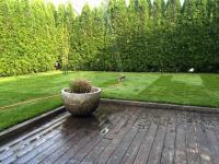 zalivanje travne ruše, namakanje, travna ruša